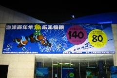 LQ Shanghai 1ste kermis (39)